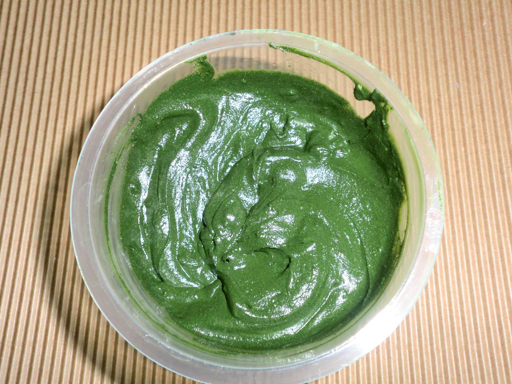 masque aux algues marines