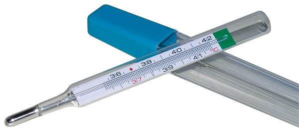 prix thermometre