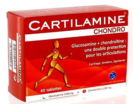 cartilamine chondro