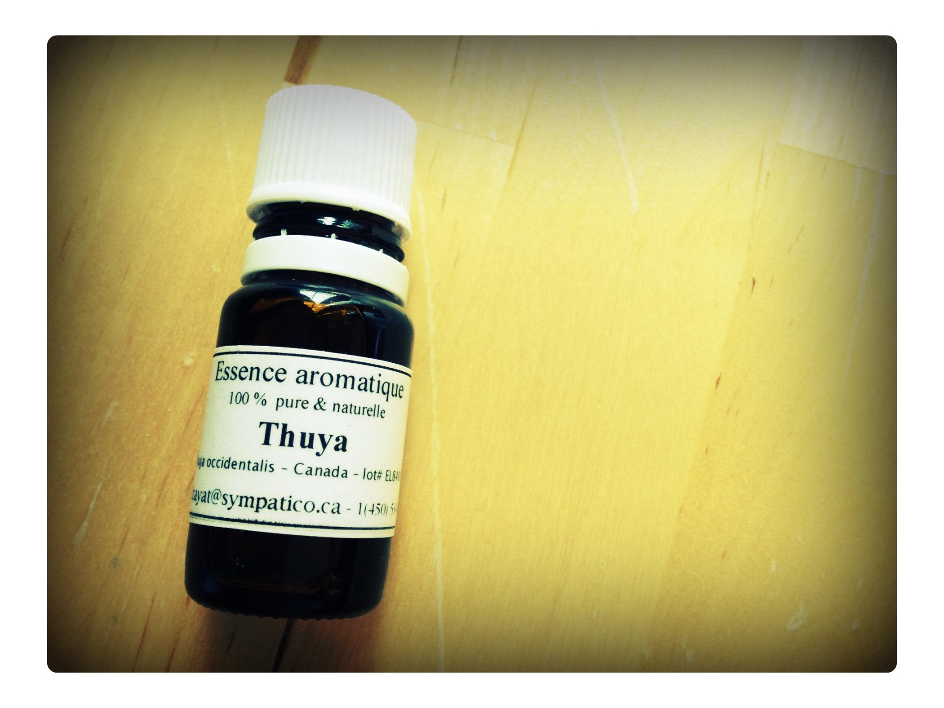 huile essentielle de thuya occidentalis